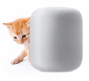 A cat next to a HomePod