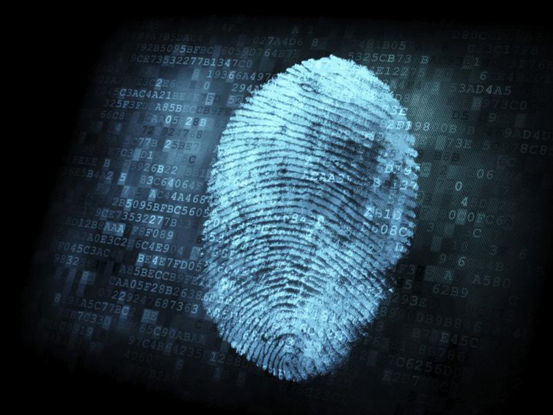 Best Biometric Fingerprint Door Locks