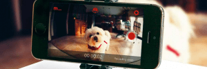 Using Your Old Phone as a Home Security Camera